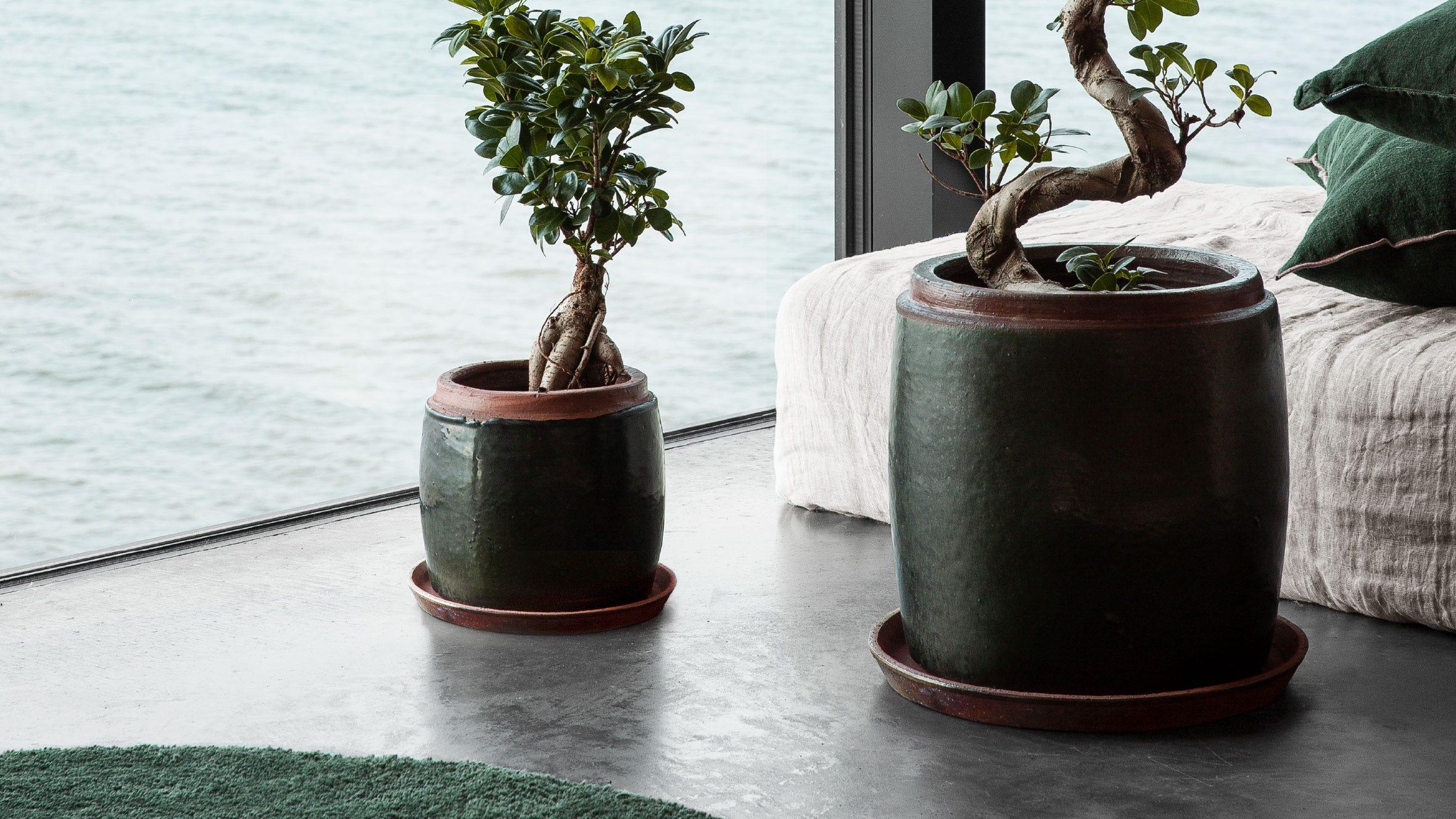Tips #5. Möblera grönt - av Magnus Fridh för Granit